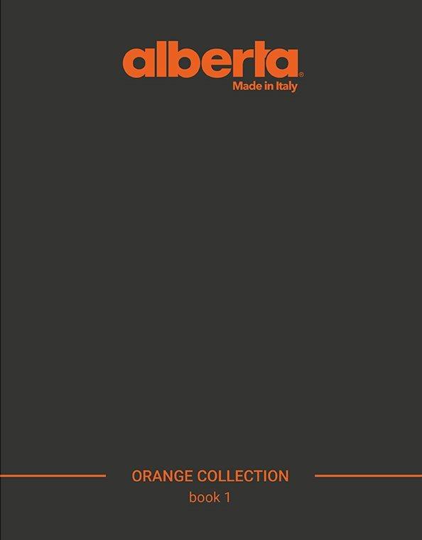 Brochure_orange(2)